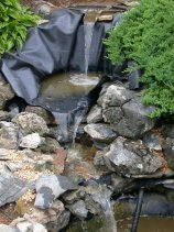 pond installation-web.jpg